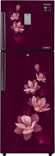 Samsung RT30M3954R7 275L Double Door Refrigerator (Magnolia Plum)