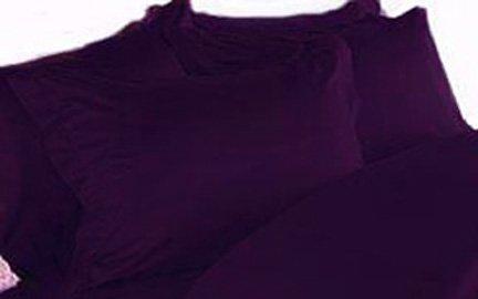 1000Tc Cotton Rich Pillowcase Pair (2) Standard Solid Plum By Marrikas front-900235