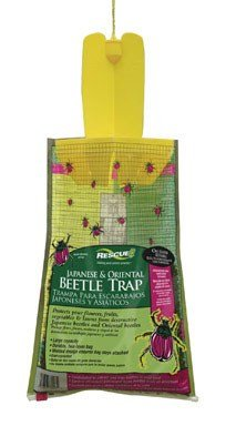 rescue-disposable-japanese-oriental-beetle-trap-3-pack