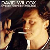 My Eyes Keep Me In Troubleby David Wilcox