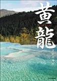 黄龍 五絶の神秘 [DVD]