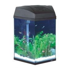 Fish R Fun Hexagonal Aquarium, 33 x 30 x 43 cm, Black