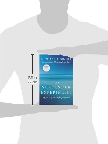 The-Surrender-Experiment-My-Journey-into-Lifes-Perfection