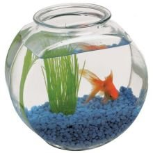 Anchor hocking clear glass drum fish bowl 2 for 2 gallon fish bowl