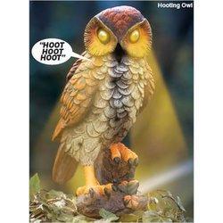 Solar Motion Detector Lights Hooting Owl: Amazon.co.uk: Garden & Outdoors