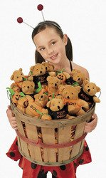 HALLOWEEN PLUSH BEARS WITH TSHIRTS (1 DOZEN)