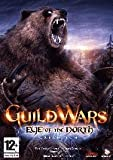 Guild Wars Eye of the North (Bear Edition)