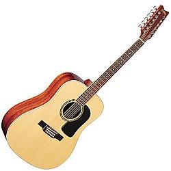 Washburn D10 Series 12 String Acoustic Guitar