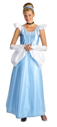 Adult Cinderella Dress Costume