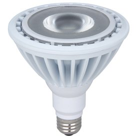 Utilitech 20-Watt (90W) Daylight (5000K) Decorative Led Bulb