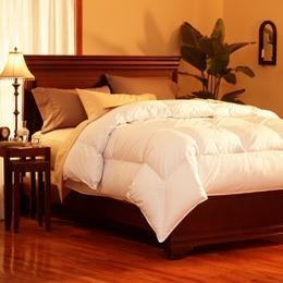 Pacific Coast Feather SuperLoft Down Comforter