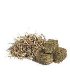 Exotic Island Pets Timothy Hay Cubes Food 1Lb Bag