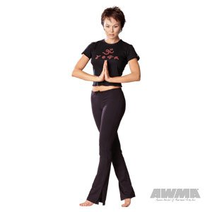 Buy Otomix Yoga Stretch Pants - Large by Asian World Martial Arts