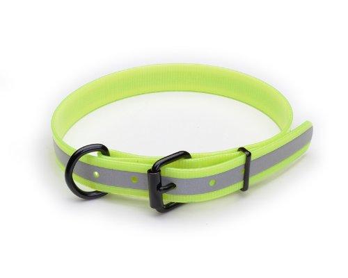 Friendly Dog Collar Green