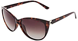 Invu Oversized Sunglasses (Black) (B2513-B)