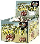 Hermit Crab Fancy Shells 24pc Counter Display