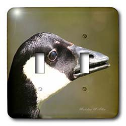 SmudgeArt Bird Artwork Designs - Canada Goose - Bird Photography - Light Switch Covers - double toggle switch