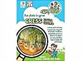 Children's Cress Extra Curled Seeds by T and M