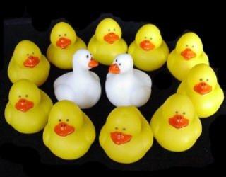 Rubber Ducky Duck Duck Goose Finger Puppet Party Favors - Buy Rubber Ducky Duck Duck Goose Finger Puppet Party Favors - Purchase Rubber Ducky Duck Duck Goose Finger Puppet Party Favors (OTC, Toys & Games,Categories,Activities & Amusements,Bath Toys)