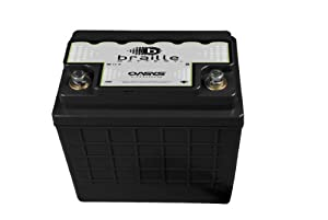 Braille Battery OSU1R-1245 Oasys 12V 'Group U1R' Deep Cycle Energy Storage Battery at Sears.com