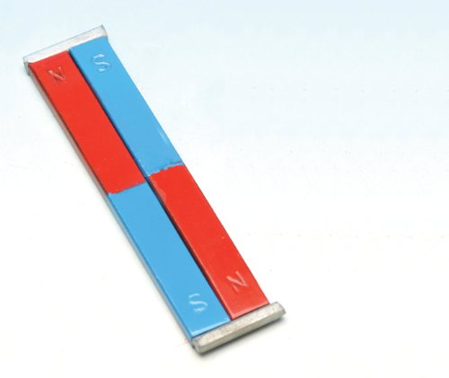 Eisco Labs Painted Blue/Red Bar Magnets - Chrome Steel, 100 x 12 x 5 mm