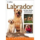 Labrador (Collins Dog Owner's Guide) (Collins Dog Owner's Guides)by Dr. Peter Neville