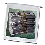 3dRose fl_17177_1 Money Matters Garden Flag, 12 by 18-Inch