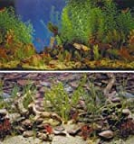Penn Plax Aquarama Shalescape Aquarium Background: 19 Tall x 50 039 Long