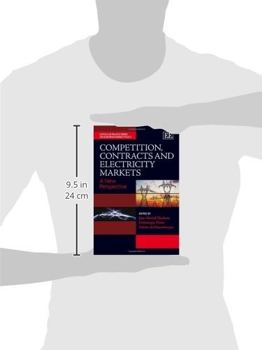 Competition, Contracts and Electricity Markets (The Loyola De Palacio Series on European Energy Policy)
