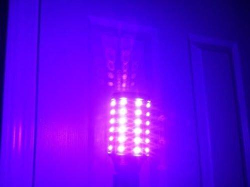 Holloween Led Black Light Bulb Uv