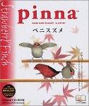 Pinna ベニスズメ