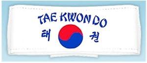 Tae Kwon Do with Korean Flag Headband