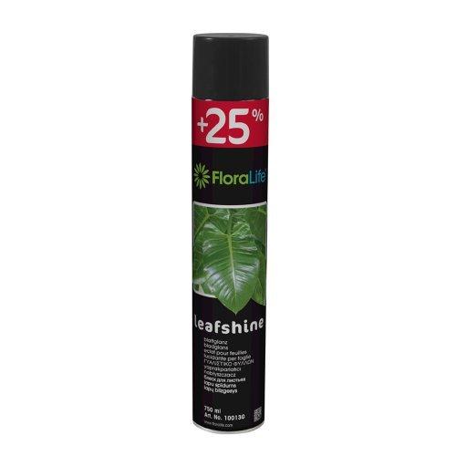 leafshine-oasis-floralife-leaf-shine-can-750ml
