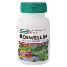 Holistic Dog Vitamins