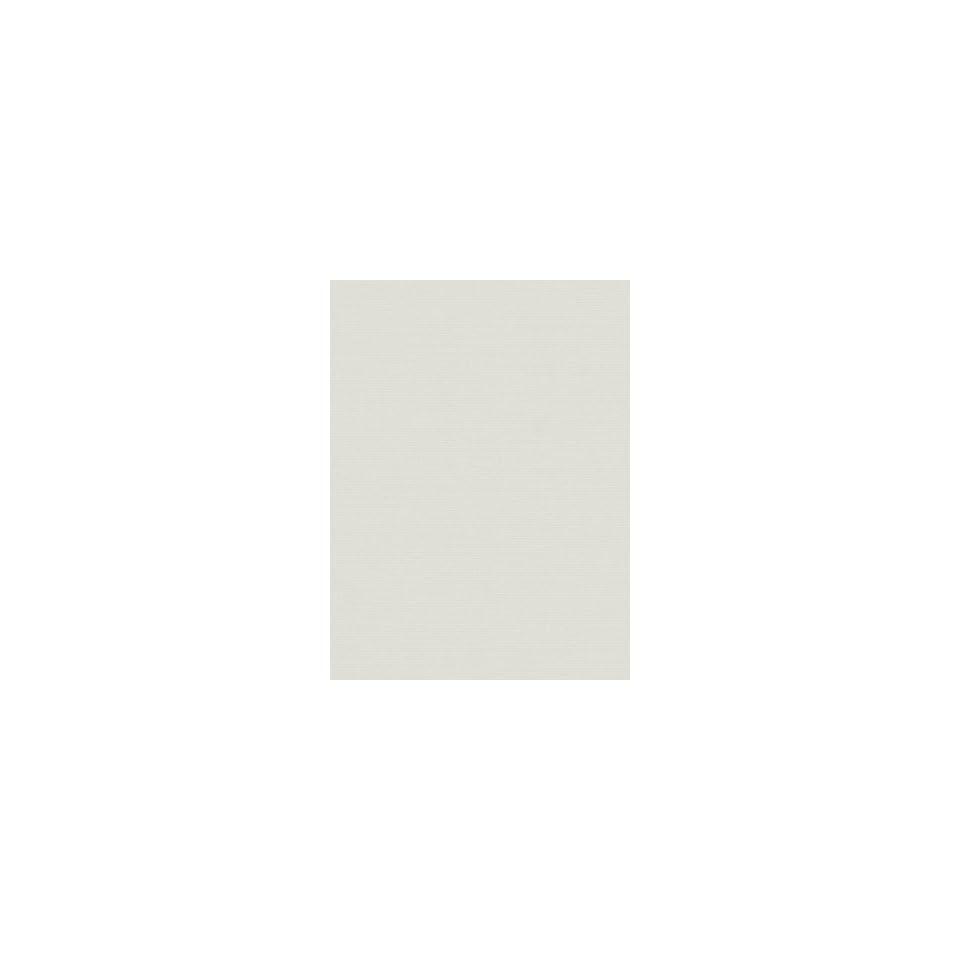 Robert Allen RA Canvas Duck   White Fabric