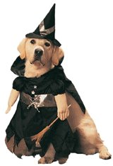Bewitched Pet Costume - Medium