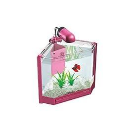 systemeng® Acquario completo angolare (ROSA)