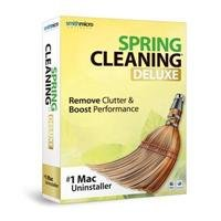 Spring Cleaning Deluxe 11