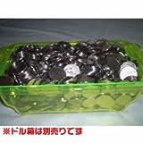 メダル・コイン(25φ)500枚
