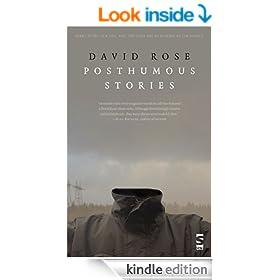Posthumous Stories (Salt Modern Fiction)