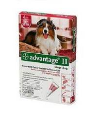 Bayer Advantage II Red 4-Month Flea Control for Dogs 21-55 lbs.