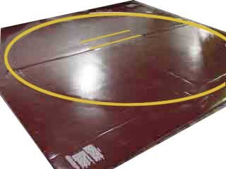Wrestling Mat - Remnant, 12'x12' (Two 6'x12' Pieces), Mat:Royal Blue, Markings:None, 1