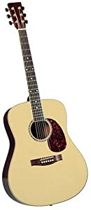 Saga SPG-1 Studio Pro Acoustic Guitar Outfit (japan import)