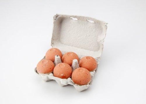Level Naturals Mixed Bath Bomb (3 Citrus Basil + 3 Lemon, Ginger, and Sage)