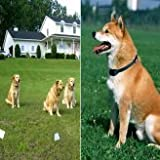 Smart & Harmless Electronic Pet Dog Fencing System (300 Meters) - Safe and Easy Controllable