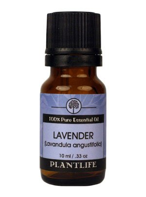 Plantlife-Natural-Body-Care-100-Pure-Essential-Oil-Lavender