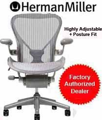 Aeron Chair by Herman Miller - Home Office Desk Task Chair Fully Loaded Highly Adjustable Medium Size (B) - Posture Fit Lumbar Back Support Cushion Titanium Smoke Frame Classic Zinc Pellicle
