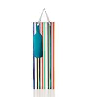 Multi Coloured Striped Bottle Bag