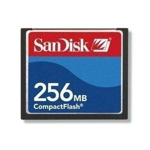 SanDisk 256