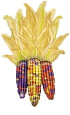 Indian Corn Autumn Purple Red Yellow 42